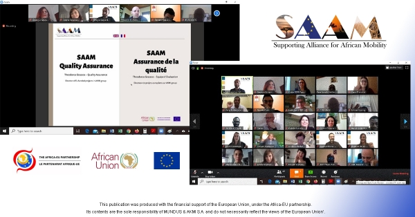 The kick-off meeting of SAAM project was held online